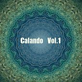 Calando, Vol. 1 - Musica Elettronica by Various Artists