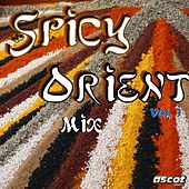 Spicy Orient Mix, Vol. 1 by Various Artists