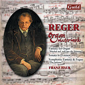 Reger: Fantasy for Organ, Sonata in D Minor, Symphonic Fantasy Fugue 'The Inferno' by Franz Hauk