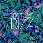 Play & Download Best Of Ibiza 2015 by Various Artists | Napster