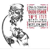 Zuhi Yiddish by Various Artists