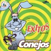 Play & Download Exitos al Estilo de Internacionales Conejos. Música de Guatemala para los Latinos by Internacionales Conejos  | Napster