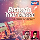Bichada Yaar Milade by Various Artists