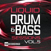Liquid Drum & Bass Sessions, Vol. 5 - EP by Various Artists
