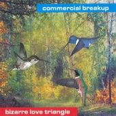 Bizarre Love Triangle by Commercial Breakup