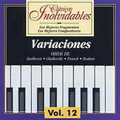 Play & Download Clásicos Inolvidables Vol. 12, Variaciones by Various Artists | Napster