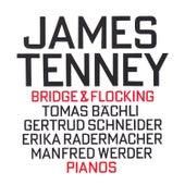 Bridge & Flocking by Manfred Werder
