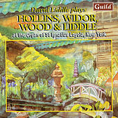 Hollins: Concert Overture - Liddle: Variations On 'Mit Freuden Zart' - Widor: Symphonie Gothique - Wood: Scenes in Kent by David Liddle