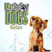 Music for Dogs (Relaxation) by Various Artists