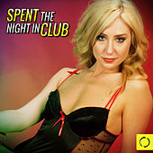 Spent the Night in Club by Various Artists