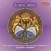 Play & Download Zurich, Arise! - Music from the Renaissance to the Baroque by Various Artists | Napster