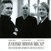 Play & Download Zemlinksy, Brahms & Škroup: Trios Piano, Clarinet & Cello by Wolfgang Meyer | Napster