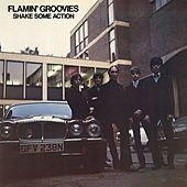 Shake Some Action by The Flamin' Groovies
