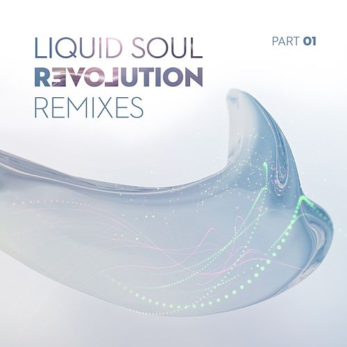 Revolution Remixes, Pt. 01 by Liquid Soul