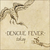 Play & Download Tokay by Dengue Fever | Napster