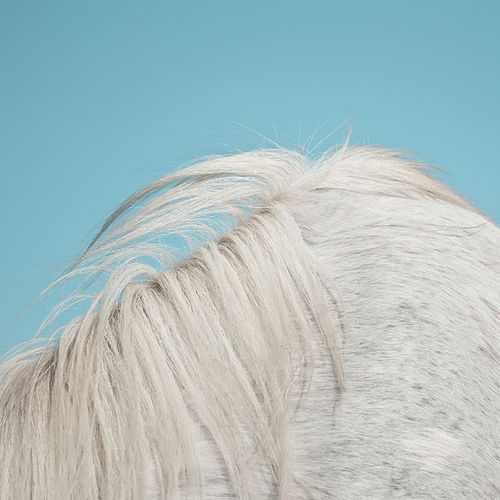 Play & Download All Yours by Widowspeak | Napster