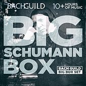 Big Schumann Box by Various Artists