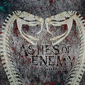 Play & Download Anthem (2015) by Ashes of your Enemy | Napster
