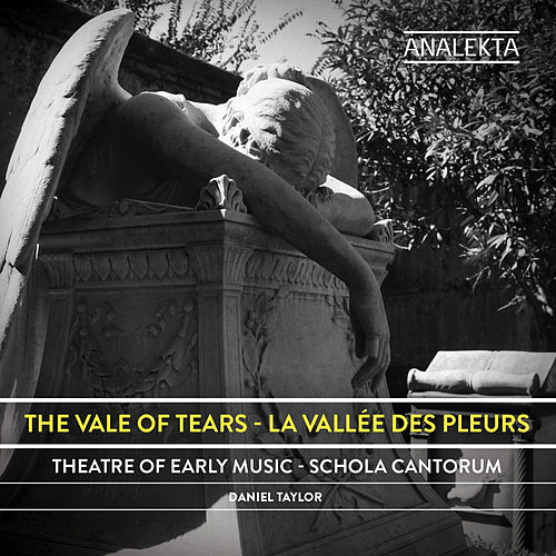 Play & Download The Vale of Tears by Daniel Taylor | Napster