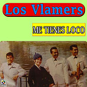 Me Tienes Loco by Los Vlamers De Marco Rayo