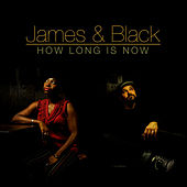 Play & Download How Long Is Now by The James' | Napster