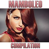 Play & Download Mamboleo Compilation by Disco Fever | Napster