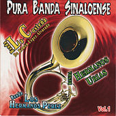 Puro Banda Sinaloense, Vol. 1 by Various Artists