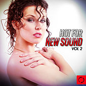 Play & Download Hot for New Sound, Vol. 2 by Various Artists | Napster