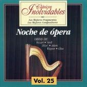Clásicos Inolvidables Vol. 25, Noche de Ópera by Various Artists