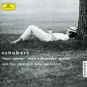 Play & Download Schubert: