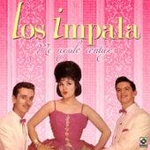 Play & Download Me Regalo Contigo by Impala | Napster
