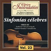 Clásicos Inolvidables Vol. 23, Sinfonías Célebres by Various Artists