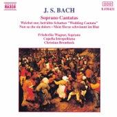 Play & Download Soprano Cantatas by Johann Sebastian Bach | Napster