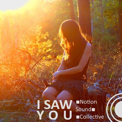I Saw You von Notion Sound Collective