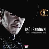 Play & Download Ahora Que No Estas Tu by Raul Sandoval | Napster