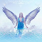 Play & Download Freedom by Erik Ekholm | Napster