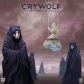 Dysphoria B Sides by Crywolf