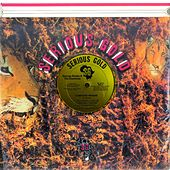 Computer Reggae by George Nooks