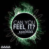 Can You Feel It?, Vol. 6 (Mixed By Baramuda) by Various Artists