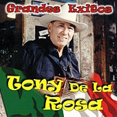 Grandes Exitos by Tony De La Rosa