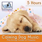 Play & Download Calming Dog Music: Play During Thunder or Fireworks - 5 Hours by Relaxmydog | Napster