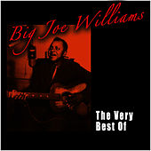 Play & Download The Very Best Of by Big Joe Williams | Napster