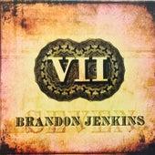 VII by Brandon Jenkins