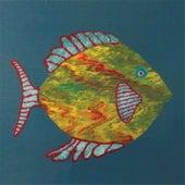 Fish by Michael Chapman