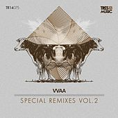 Special Remixes Vol.2 by Various Artists