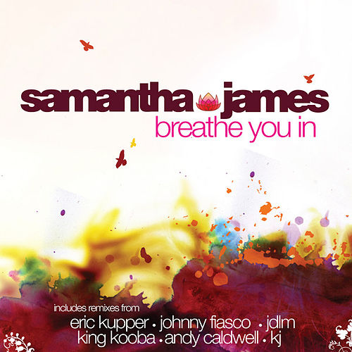 Breathe You In by Samantha James