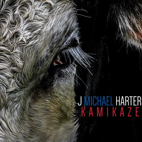 Play & Download Kamikaze by J. Michael Harter | Napster