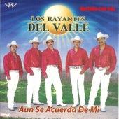 Aun Se Acuerda de Mi by Los Rayantes del Valle