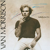 Wavelength by Van Morrison