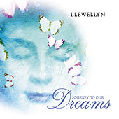 Journey to Our Dreams by Llewellyn